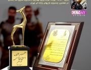 بازی خاک, جشنواره بازی تهران, غزال زرین, استودیو گونای, کیوان ملک محمدی, بازی ایرانی